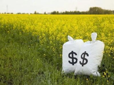 为什么你总拿不到农业补贴?这里有最详尽的申领技巧!