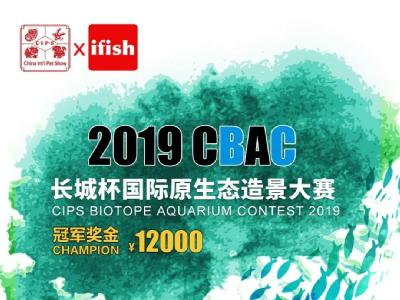 2019亚虎777娱乐杯国际原生态造景大赛 | 开赛通知