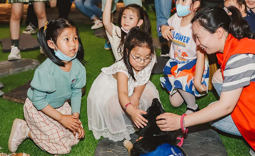 From no entry to pet friendly, the development of pet industry in China