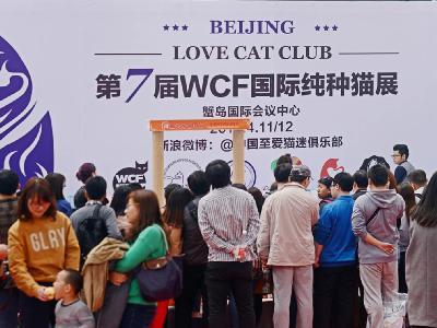 2015年北京站——展会现场
