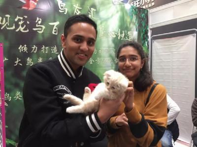2018年北京宠物文化节 选一个盟宠物带回家