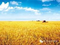 国家统筹三大类型区域农业发展,来看看都有啥~