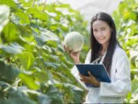 果蔬展邀您参加2017年澳大利亚新西兰水果市场参观团的通知