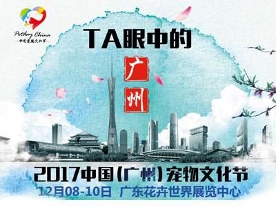 2017年中国(广州)宠物文化节将于12月8日开幕