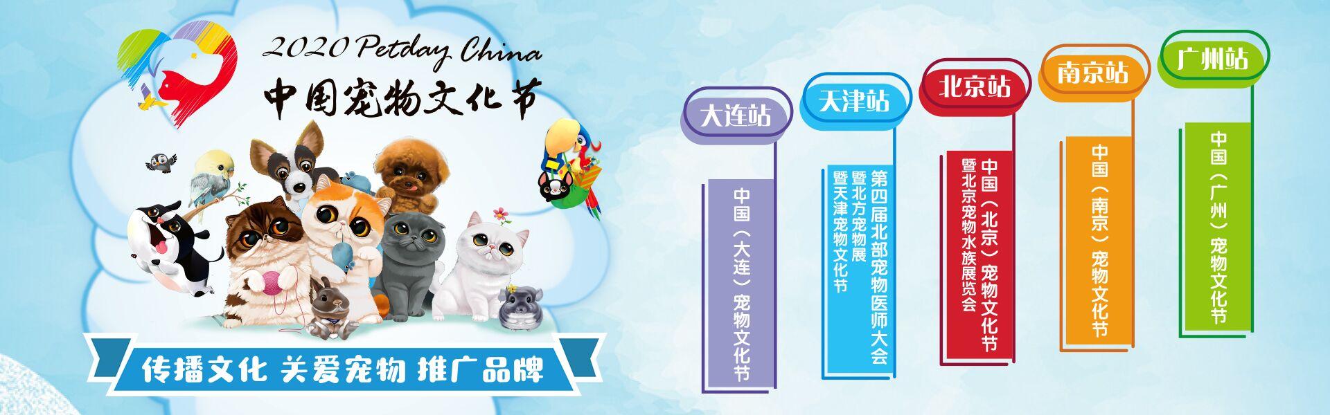 首页大图-宠物文化节