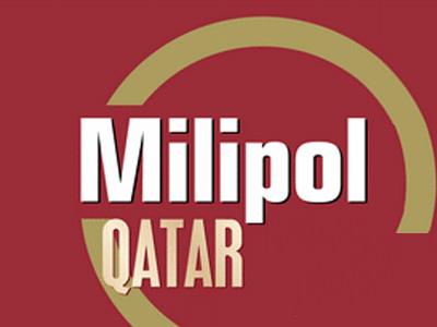 卡塔尔军警展